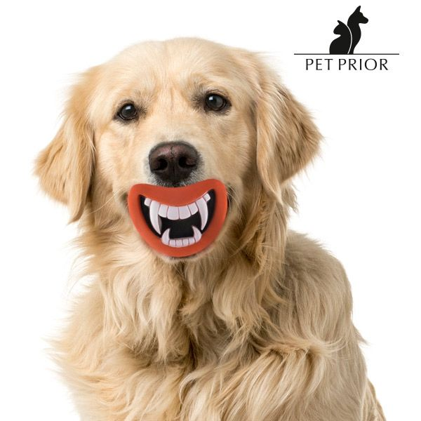 Funny Pet Prior Rubber Dog Toy with Sound