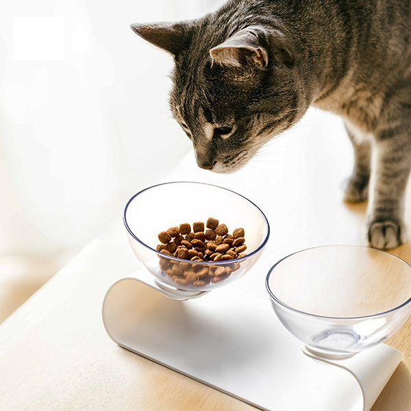 Pet feeding dish Double Galaxy