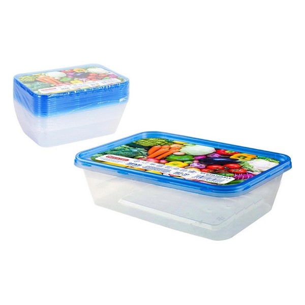 Set of 10 lunch boxes Privilege 500 ml