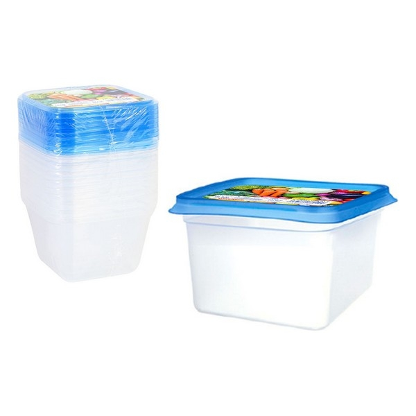 Set of 9 lunch boxes Privilege 550 ml