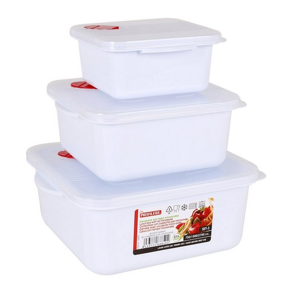 Set of Lunch Boxes with Lid for Microwaves Privilege Squared