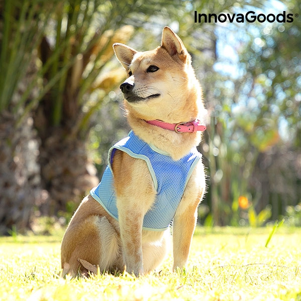 InnovaGoods Refreshing Pet Vest for Small Pets - S