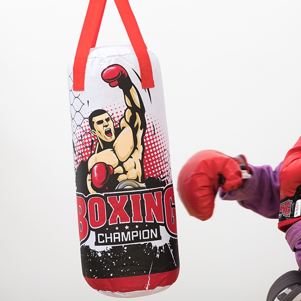 Punch-bag Childrens Champion